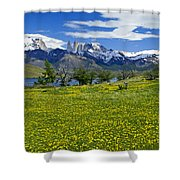 Springtime In Torres Del Paine Shower Curtain