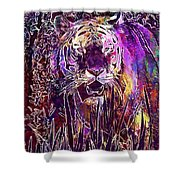 Tiger Predator Fur Beautiful  Shower Curtain