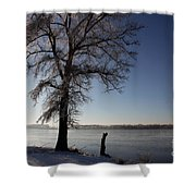 Trees In Ice Series Shower Curtain