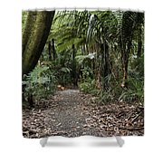 Walking Trail Shower Curtain