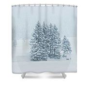 Winter Landscapes Shower Curtain