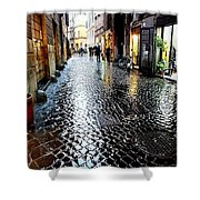 winter in Rome Shower Curtain