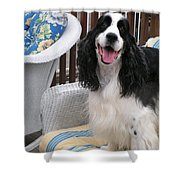#940 D1036 Farmer Browns Springer Spaniel Happy For You Have A Happy Day Shower Curtain