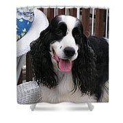 #940 D1038 Farmer Browns Springer Spaniel Adorable Happy Shower Curtain