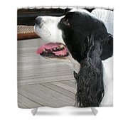 #940 D1060 Farmer Browns Springer Spaniel Shower Curtain