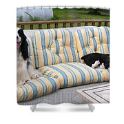 #940 D1082 Farmer Browns Separate But Always Together Shower Curtain