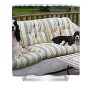 #940 D1084 Farmer Browns Separate But Always Together Shower Curtain