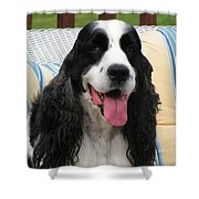 #940 D1089 Farmer Browns Springer Spaniel Shower Curtain