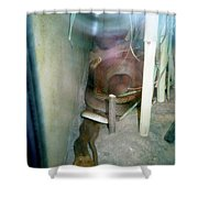Australian Native Animals Shower Curtain