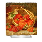 A Basket Of Strawberries On A Stone Ledge Shower Curtain