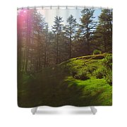 A Beautiful Day In Woods Shower Curtain