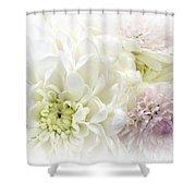 A Beautiful Dream Shower Curtain
