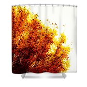 A Beautiful Fall Day Shower Curtain