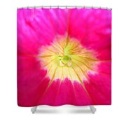A Beautiful Mystery Shower Curtain