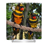 A Beautiful Pair Shower Curtain