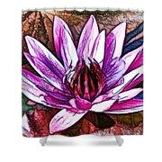 A Beautiful Purple Water Lilies Flower Shower Curtain