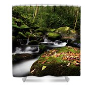 A Beautiful Season Shower Curtain