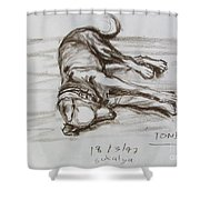 A Big Puppy Shower Curtain