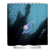 A Bioluminescent Tunicate, Catalina Shower Curtain