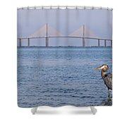 A Bird And A Bridge Shower Curtain