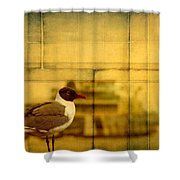 A Bird In New Orleans Shower Curtain
