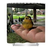 A Bird In The Hand Shower Curtain