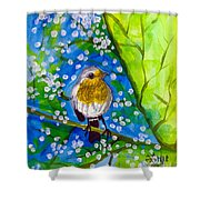 A Bird Shower Curtain