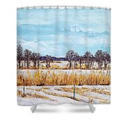 A Bird's Eye View Shower Curtain