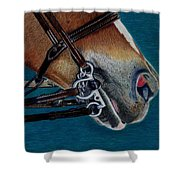 A Bit Of Control - Horse Bridle Painting Shower Curtain