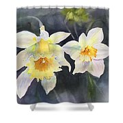 A Bit Of Spring Shower Curtain