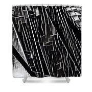 A Black-and-white Cookie Shower Curtain