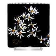 A Black And White Study Shower Curtain