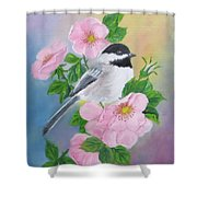 A Blackcapped Chickadee And Roses Shower Curtain
