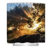 A Blast Of Sunrise Shower Curtain
