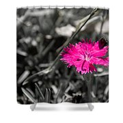 A Bloom Of Color Shower Curtain