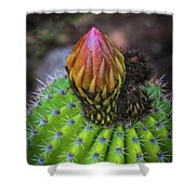 A Blooming Cactus Shower Curtain