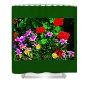A Bouquet From Bermuda Shower Curtain