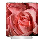 A Bouquet Of Roses Shower Curtain