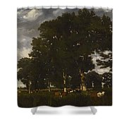 A Bright Day 1840 Shower Curtain