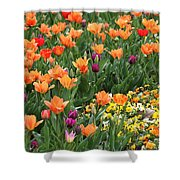 A Burst Of Spring Color Shower Curtain