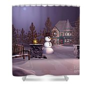 A Calm Winters Night Shower Curtain