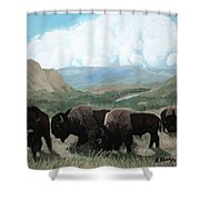 A Child Leads The Herd Shower Curtain