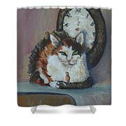 A Clockwork Cat Shower Curtain