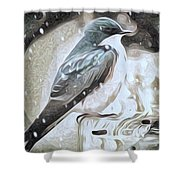 A Cold Winter Day Shower Curtain