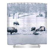 A Cold Winter's Day Shower Curtain