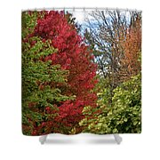 A Collection Of Fall Colours Shower Curtain