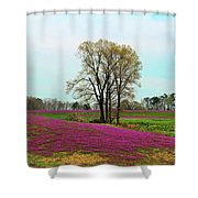 A Colorful Field Shower Curtain