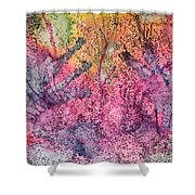 A Colorful Lecture On Glitter Shower Curtain
