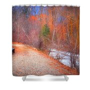 A Colourful Winter Shower Curtain
