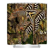 A Confusion Of Zebras Shower Curtain